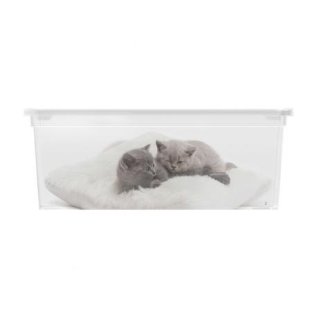 Plastový box KIS Puppy and Kitten - S