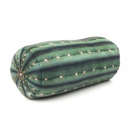 Relaxační polštář - kaktus