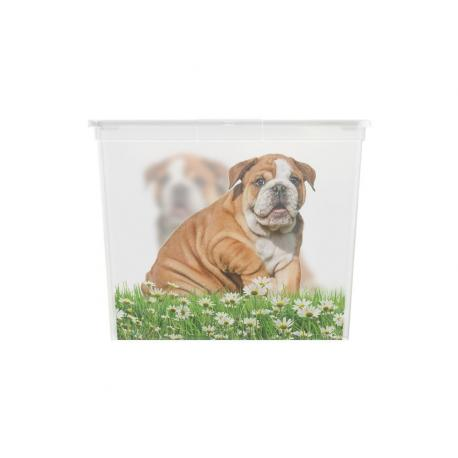 Plastový box KIS Puppy and Kitten - XL