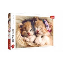 Puzzle Spící koťata 500 dílků 48 x 34 cm v krabici