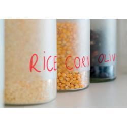Kokosová zemina WENKO lisovaná - 1,3 kg